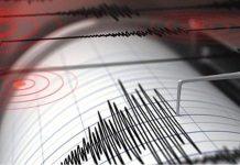 Няма данни за пострадали българи при земетресението