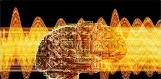 Човешка интелигентност