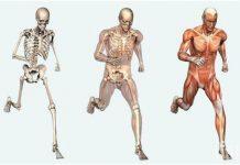 Странните защитни реакции на тялото