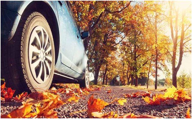 Безопасно шофиране през есента