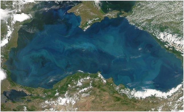 Дали Черно море е дом на праисторическо чудовище
