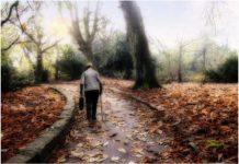 Животът, събран в 20 житейски съвета