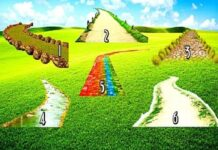 избери своя път