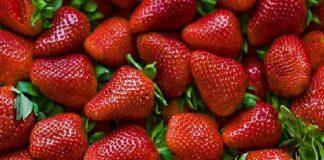 Ягодите са богати на витамини