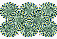 Въртящи се змии - тест за вашето здраве