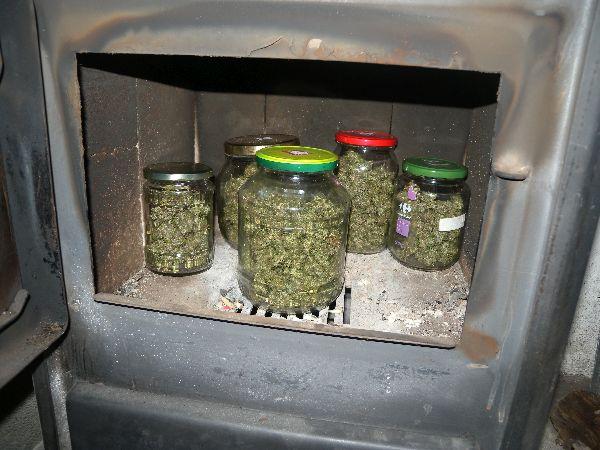 12 души са задържани за наркотици