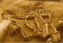 Погребението в Долни Вестонице