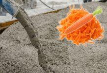 Учени изследвали как бетонът може да бъде подсилен с влакна от моркови