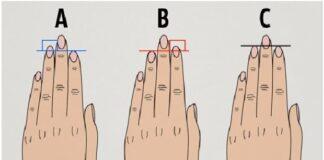 Дължината на пръстите е снимка на характера ви
