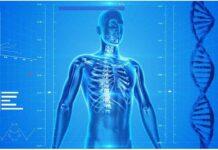 Костите и нещата, които не знаете за тях