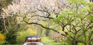 Пролетта пукна, ние - не